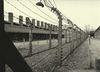 Osvetim_Auschwitz_BW_002.jpg