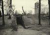 Osvetim_Auschwitz_BW_012.jpg