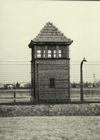 Osvetim_Auschwitz_BW_057.jpg