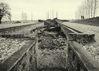 Osvetim_Auschwitz_BW_074.jpg