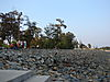 Changipur_beach.jpg